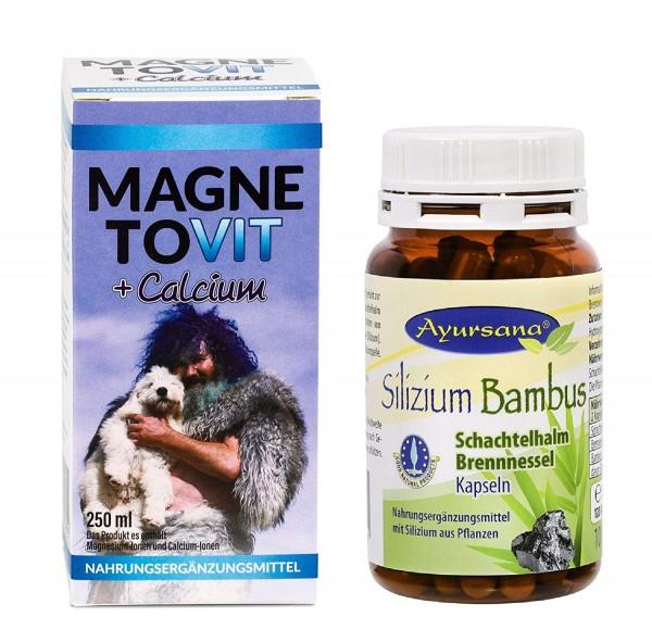 Robert Franz - Magnetovit (250 ml) und Ayursana Silizium-Kapseln (120 Stück)