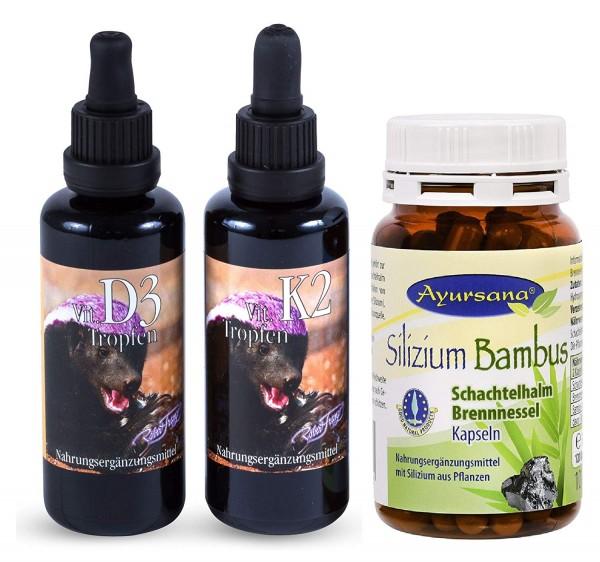 Robert Franz - Vitamin D3 und K2 Tropfen (2 x 50 ml) und Ayursana Silizium-Kapseln (120 Stück)