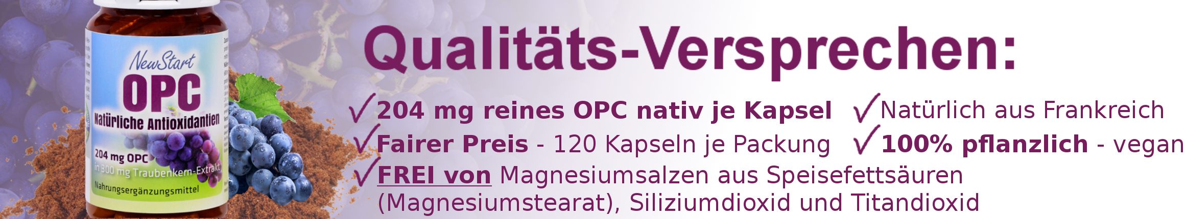 OPC-Banner-Unterkategorie589438aa7c1e6