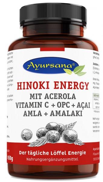 Ayursana - Energy mit Acerola, OPC, Acai und Amalaki (450 g)