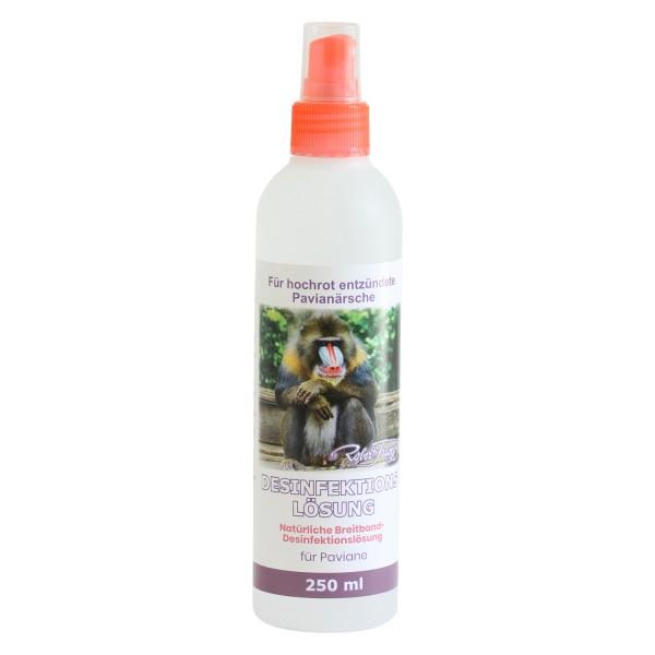 Robert Franz - Desinfektionslösung - Natürliche Breitband-Desinfektionslösung (250 ml)